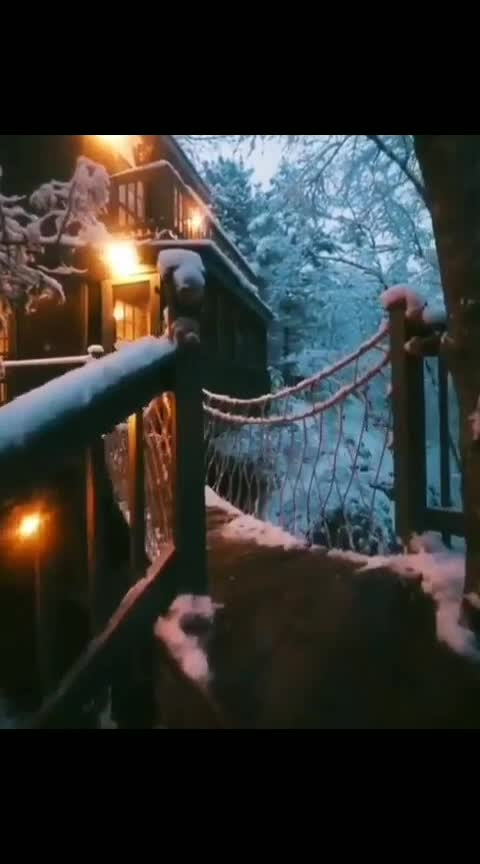 Tree House - A dream #wow #captured #amazing #trendying #dreamful #treehouse #touristspot #coupleslove #bestvideooftheday #unbelievable #nature #beautyatitsbest #natureatitsbest #naturepower #loveness #trendingnow #woohoo #tourism #memorable