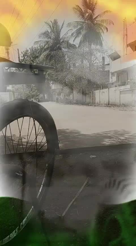 #jaiho #roposostar #hindustani #indian #indianlook #indianrocks