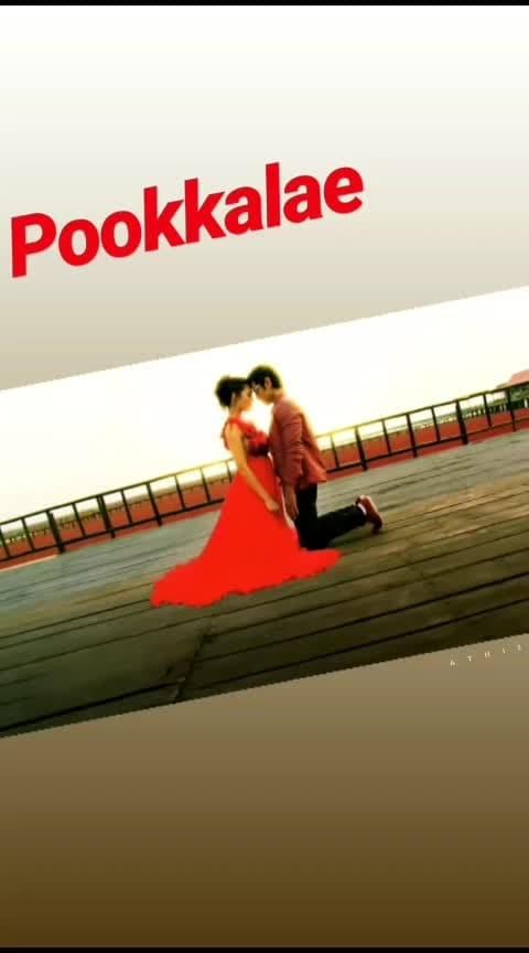 #imovie  #pookkalae  #arr  #arrahman  #arrahmanmusic  #arrahmanhits  #beats  #beatschannel  #roposo-beats  #beatstv  #roposostar  #roposo_star  #roposostarchannel