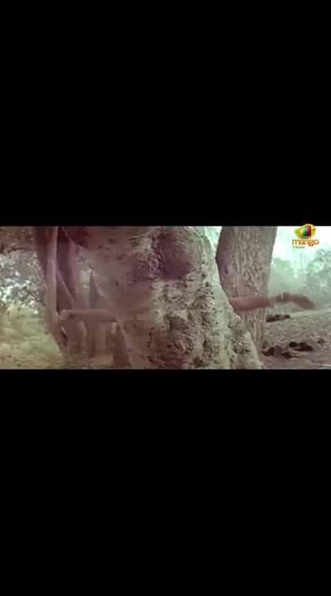 #adaviramudu #oldisalwaysgold #telugusong #telugumovies #telugu-roposo #teluguactress #anr_ #ntrfans #srntr-dance #ramarao #oldsongs #ghantasala songs