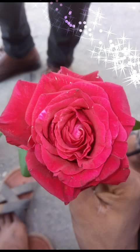 #roposo-beauty