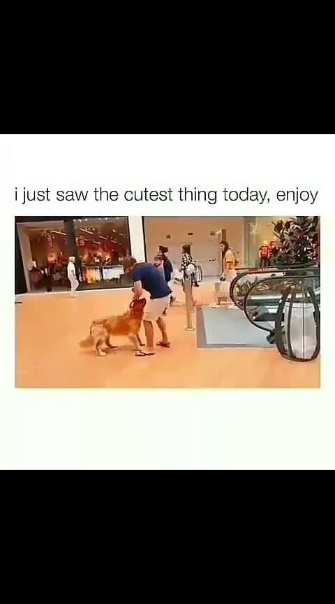 #doggystyle #dogsofinstagram #doglover #roposoness #roposotv