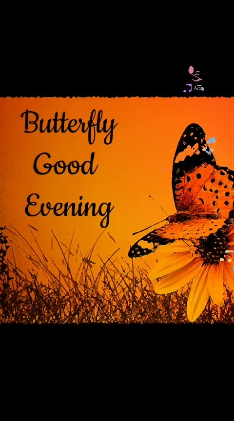 #butterfly 😊
