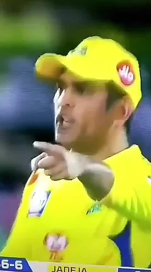 #sheraaya #sher #dhoni #cskvsrr #mahiya #cricketfever #roposo-sport #sportstvchannel