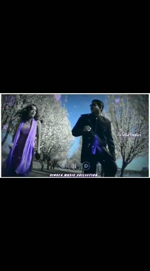 #julymalargale #vijay #bagavathi #thalapthy-vijay #rimasen #vijay-hits #vijaysongs