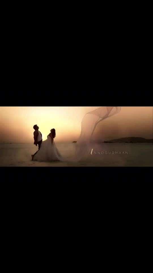 Velaikkaran   #sivakarthikeyan #sivakarthikeyanproductions #ladysuperstar #ladysuperstarr #lovesong #anirudhravichandar #anirudh #aniruthmusic #aniruthofficial #velaikaran #uyire #kadhal #kadhale_kadhale #janu #ram #ipl2019 #vivoipl2019