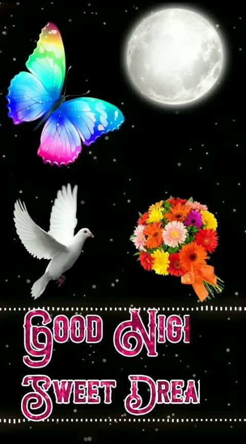 #roposodailywishes  #goodnight