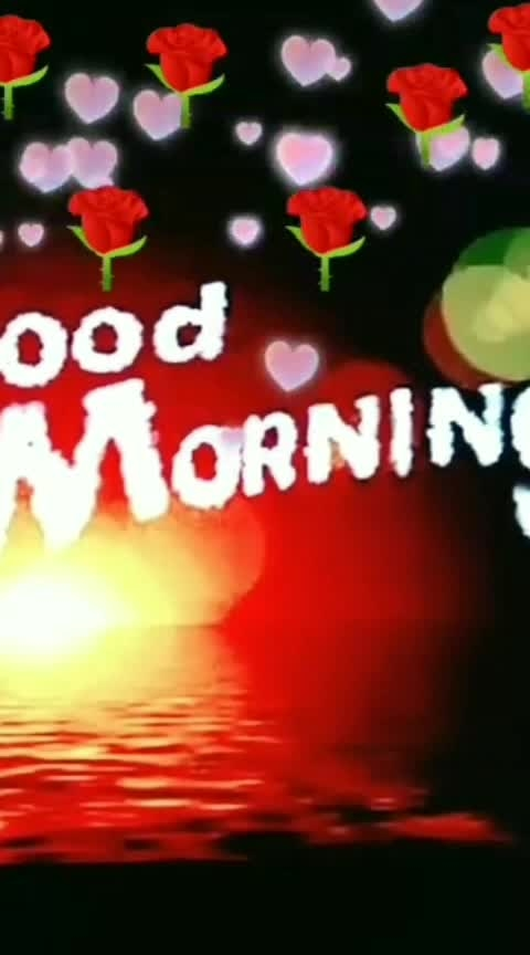good morning friend 🏵️----- 🎄🎁 #deepveer  #thetimeline 🎁 🎄 🎆🎆🎇@roposocontests    🎇🎆🎆#roposostars    #roposo-fashiondiaries    #roposo-makeupandfashiondiaries   #ropo-love  #roposo-good    #roposo-dance  #roposobeauty   #roposo-beats   #roposo-family   #roposo-hahahaha    #roposo-masti   #roposo-morning   #roposostar    #wow       #tranding     #roposo     #feed     #ropo-beauty     #dance     #risingstar       #roposo-style       #weeklyhighlights       #beats       #goodmorning     #status