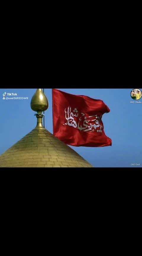 #maulaali #ali #haider #sher #khaiber #aliali