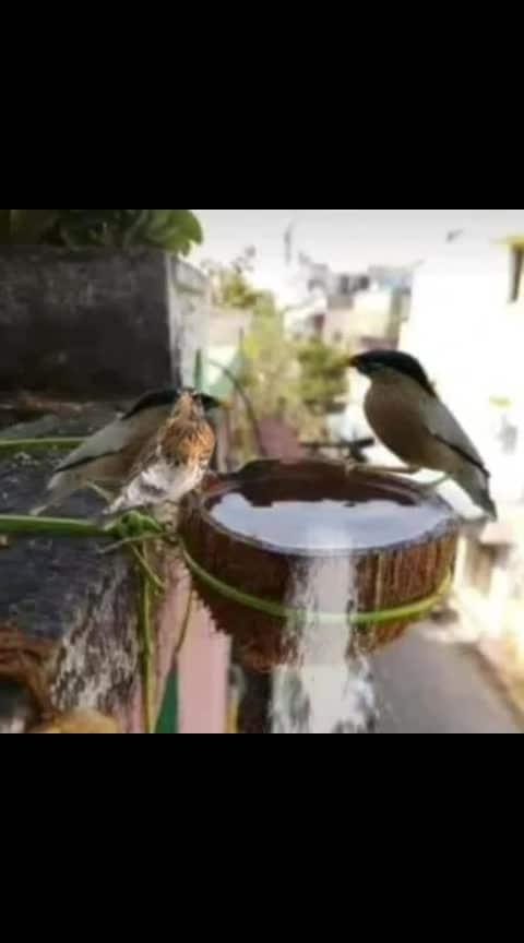 funny video #haha-tv #filmistaan #foryou #roposostars #gubru #bahubali #amazing-creation