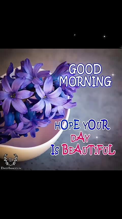 #beautifulday 💐