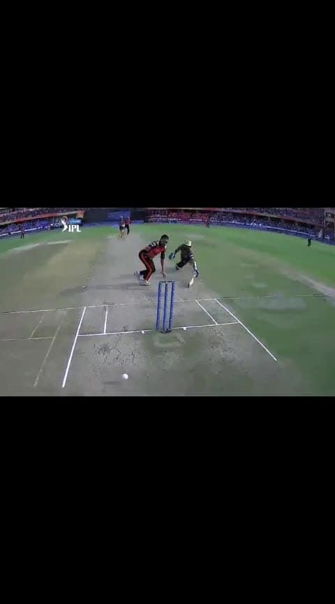 #vijayshankar #runout #superthrow #bullet #arm #roposo-sports #sportstv