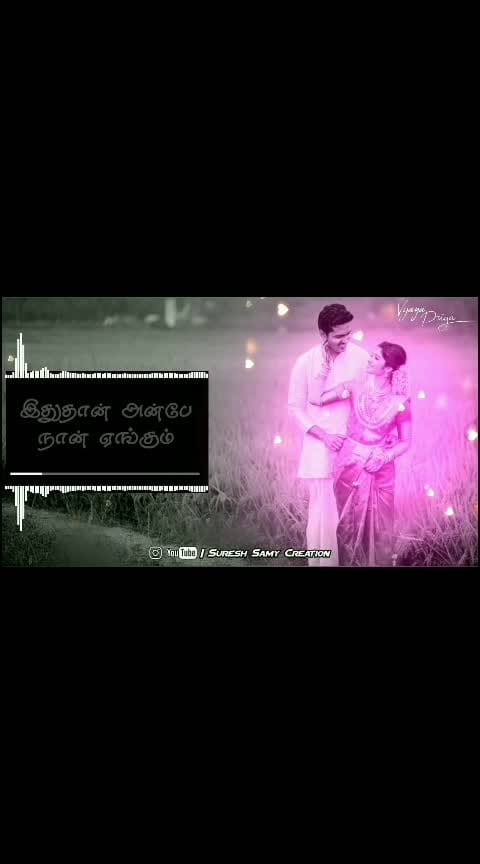 #love----love----love #tamillovestatus_ #tamilfullscreenwhatsappstatus #ar_rahman #roposo-lovesongs