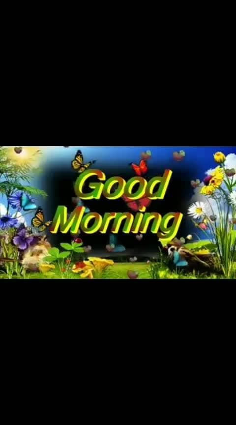 Good Morning Romantic Status, Good Morning Status, Good Morning Whatsapp, good morning video ,