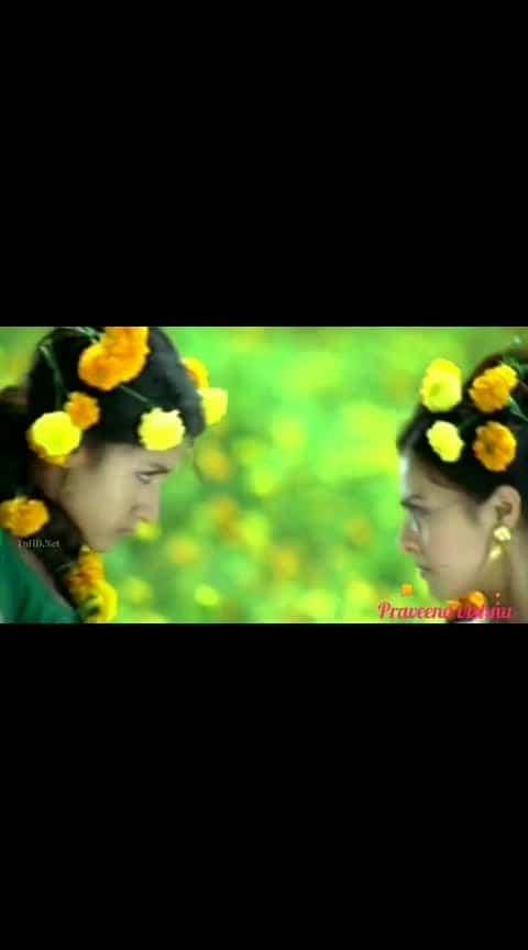 #trisha #trishakrishnan #trishafans #shankarmahadevan #flowers #ropo-beauty #tamil-actress