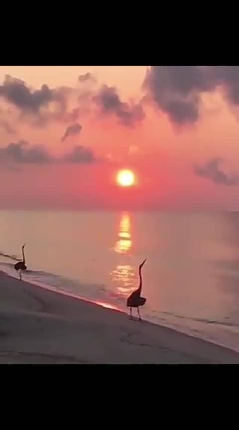 beautiful scene ...ocean voice #ropososcene