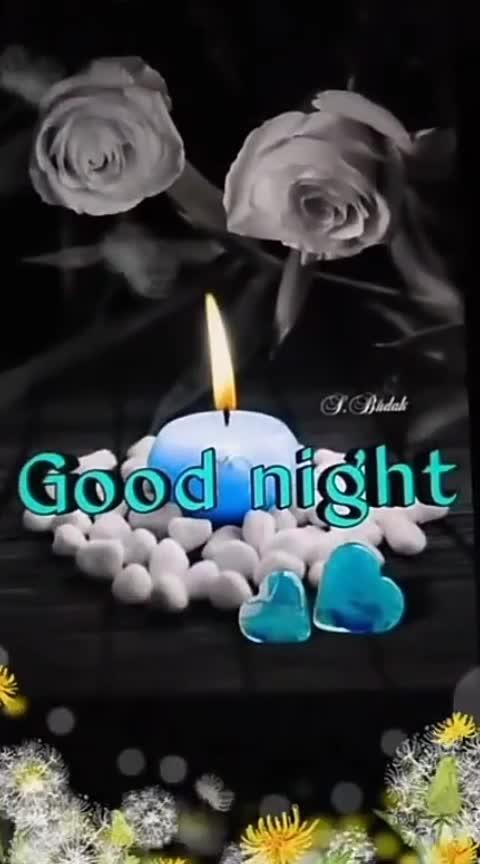 #good-night #goodnightpost #roposo-good-night #good--night--my--all-roposo--friends #goodnight-wishes-night #nightynight #good---night #good----night #_good-night #summer night #night