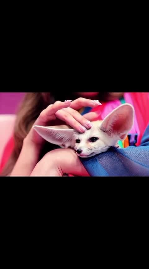 I love this song 😍😍😍#blackpink #korean_fashion_online #korean_fashion #koreanstyle