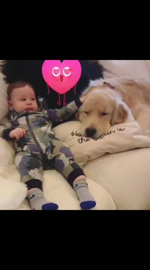 😘#bestfriendsforever #bestiesforlife  #labrador #dogs #animallover #mydog #cuteness