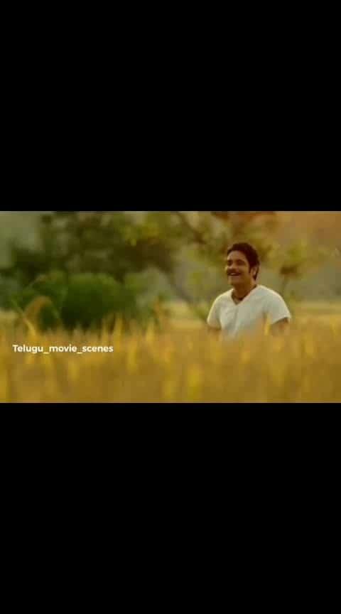 #manam #shreya #akkineninagarjuna #nagachaitanya #samantha #chaysam #lobely_romantic_song #love #chinnichinni