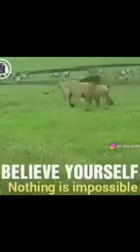 #motivationquotes #believeinyourself #nothingisimpossible