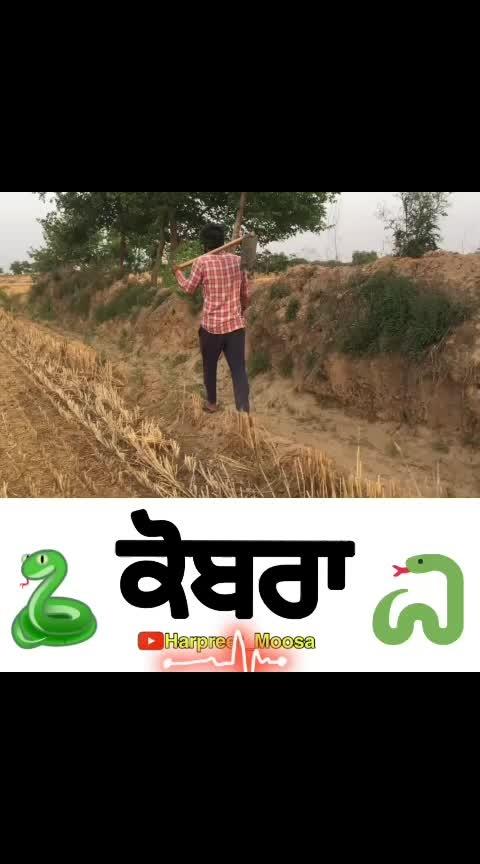 @gulab_sidhu_moosa @khush_sidhu_moosa  #punjabi #india-punjab #rops-star #roposostar #roposostars #roposostarchannel #roposoness #ropososhare #roposo-roposostar #roposostarchanne #instagram #youtuber #snapchat #glitter #twitter #whatsapp #haha #haha-tv #roposo-haha #haha-funny #haha-fuuny-video #haha-very_funny #haha-tv_follow #hahahahahahahahahaha