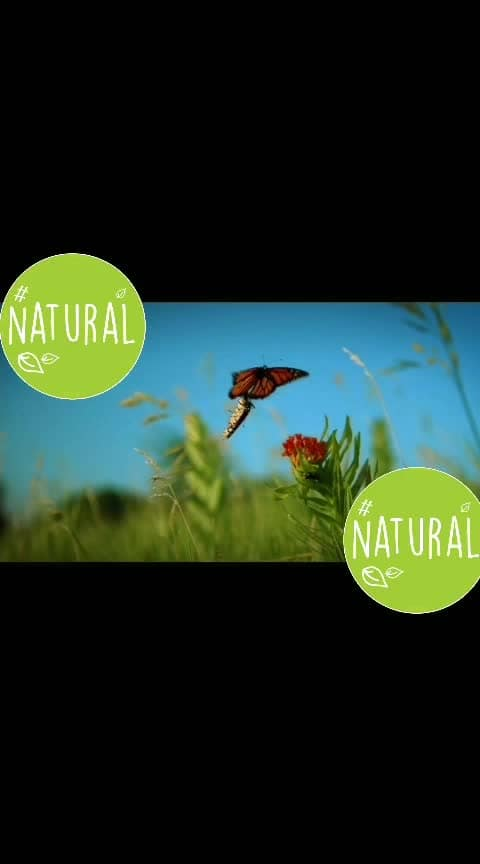 #natural-look #naturelover