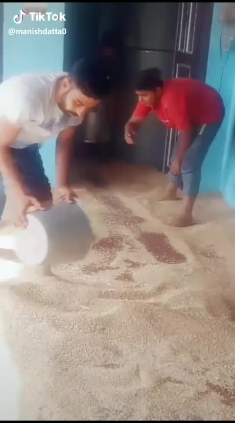 wheat storing