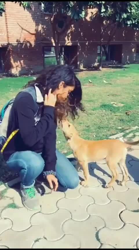 🐾🐾😘😘 #dogs #petlovers #animallovers #slowmotion #roponess