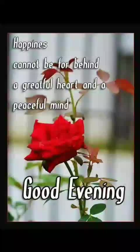 #good--evening--roposo--friends