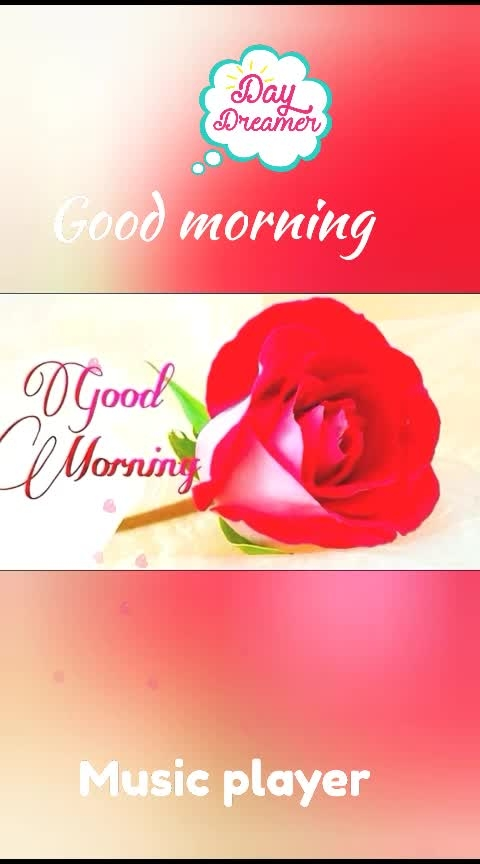 Good morning  #dailywishes #dailypic #good----morning #roposo-beats #filmistaan