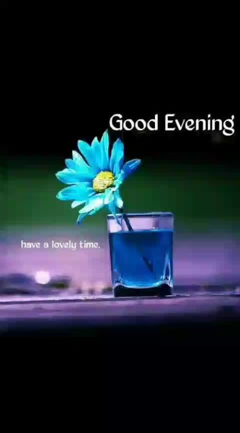 #good---evening