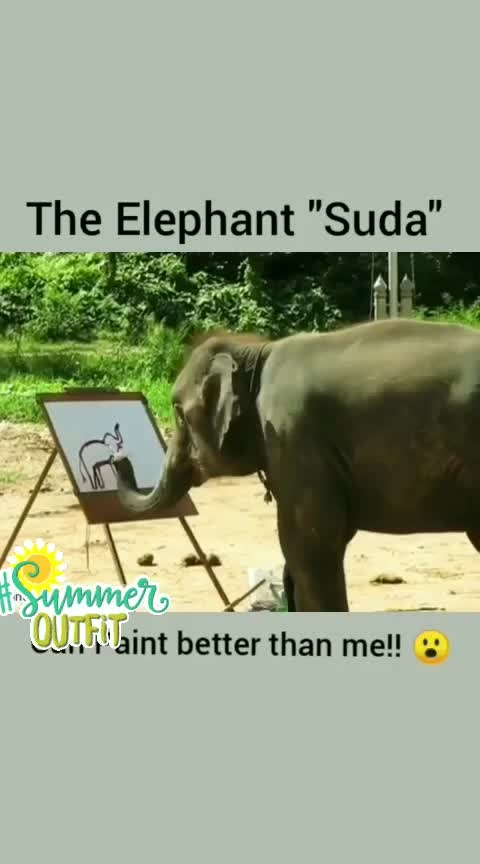 #4yr old elephant can paint!!🐘😍😘😬#elephantprint 😱#junglesafari #paintings #colour #wow