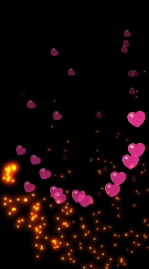 couple goals ❤️😘 #couplegoals #lovecats #followingme