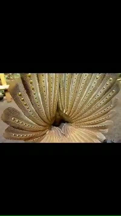 How amazing #amazing #amazing-video #birdsworld #birds #bird #birdlover