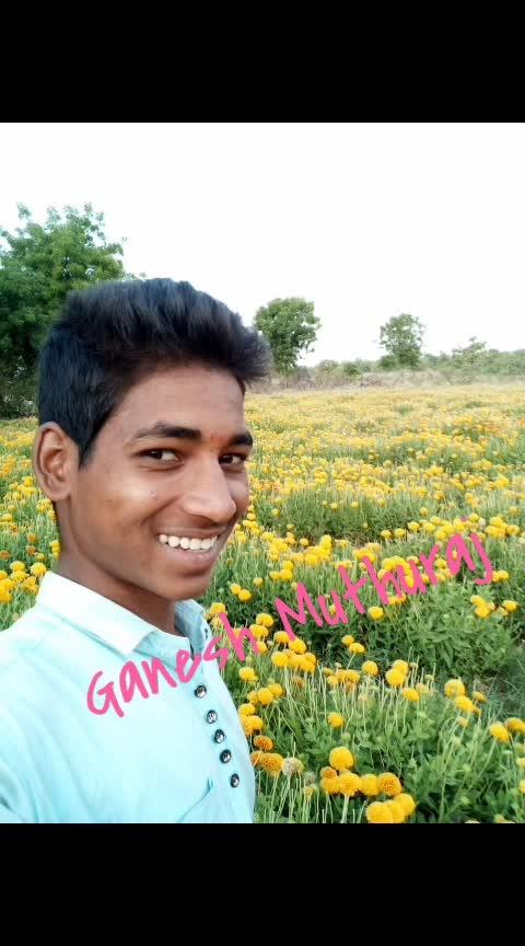 kadwa Nirmal Nirmal