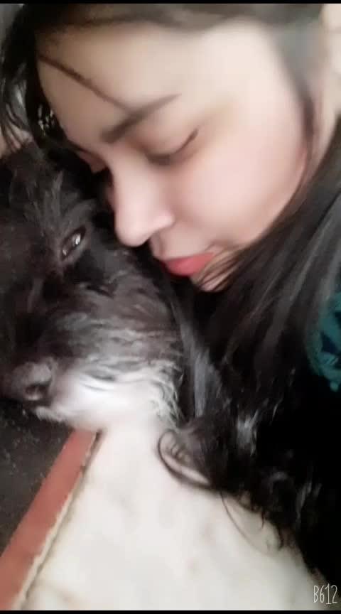meri jaan😘😘😘😘😘😘#ropos #pet #petstagram #pets #myday #my love my hero😍