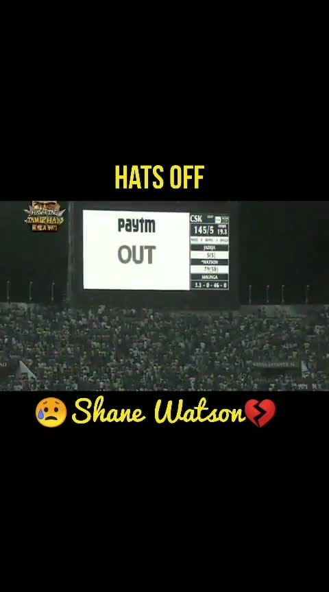 what a dedication and sacrifice💔👏👏👏.... #csk  #ipl  #shanewatson  #cricket  #dedication #sacrifice #heart-touching #heartbroken #roposo-sport #roposo-sports #sport #cricketlovers