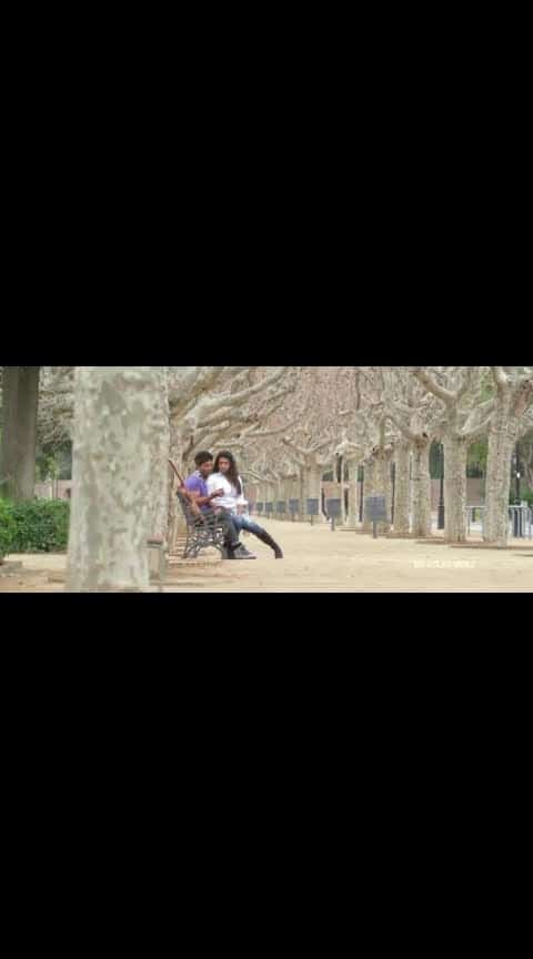 #idharammayilatho #allu_arjun #amalapaul #whatsapp_status_video #lovebeats