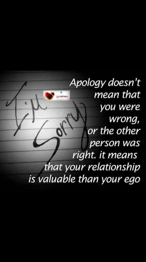 meaning of apology