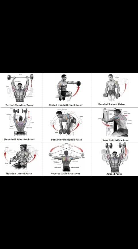 gym step by step