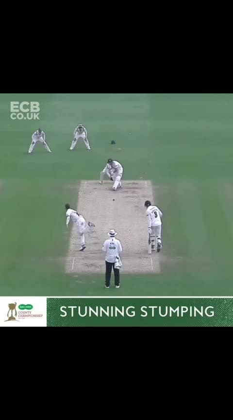 Quick thinking, but even quicker hands - we love a leg side stumping 🙌🔥