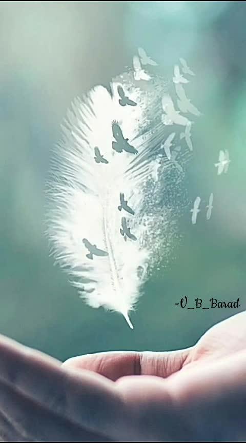 #creature #natural #-----roposo  #v_b_barad