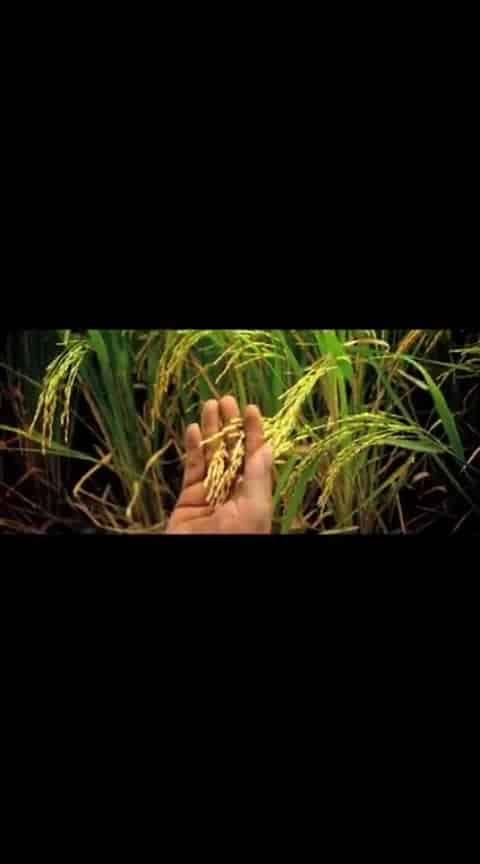 #telugufilms #maharshi #musicbox