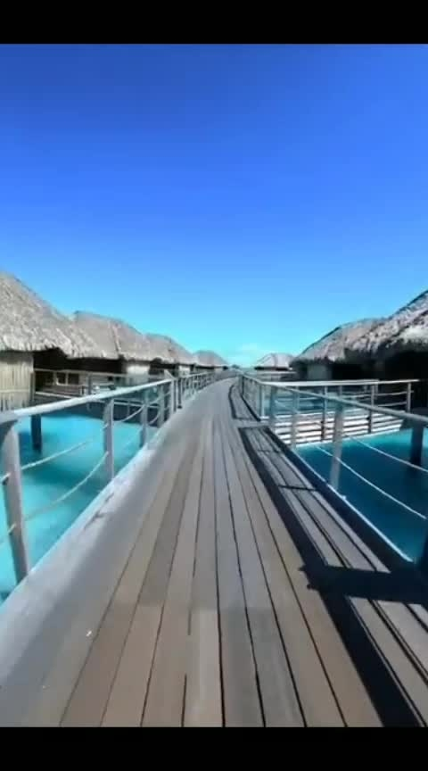 #roposoclick #videocamera #maldivesislands #lovefornature