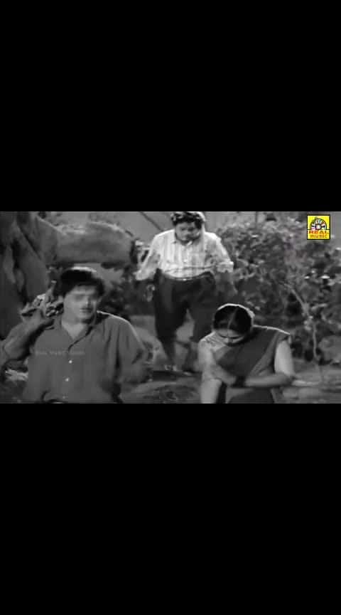 #mrradha