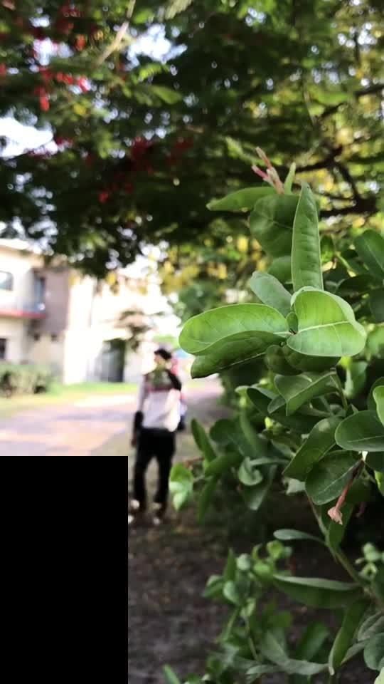 #bolna #slowmotion #featurethis #featurethisvideo #bollywoodlife
