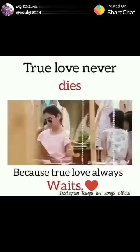 #trueloveneverdies
