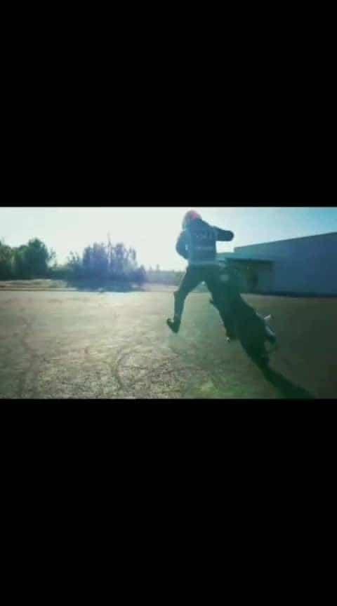 #stunt #ktm_oficial #duke200 #love #ktmlover