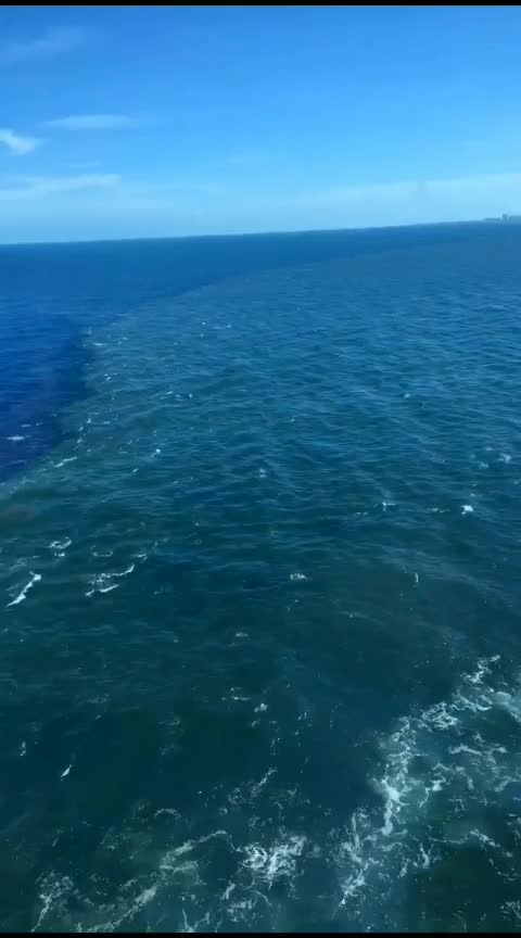 Where two oceans meet but do not mix. 😍 #oceans  #natural-look  #bytheocean  #wildchild  #ropo-beauty